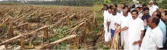 ஓகி புயலில் உயிரிழந்த மீனவர்கள் குடும்பத்திற்கு 20 லட்சம் நிவாரண உதவி: முதல்வர் அறிவிப்பு