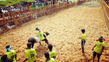 பெரம்பலூர் அருகே கொளத்தூரில் ஜல்லிக்கட்டு: 8 பேர் காயம்