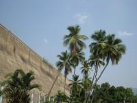 ஆய்வக உதவியாளர் பணியிடத்திற்கான தேர்வை இன்று பெரம்பலூர் மாவட்டத்தில் 6,773 பேர்கள் எழுதினார்.