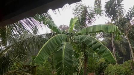 பெரம்பலூர் மாவட்டத்தின் பல்வேறு பகுதிகளில் கோடை மழை! மக்கள்  மகிழ்ச்சி!!